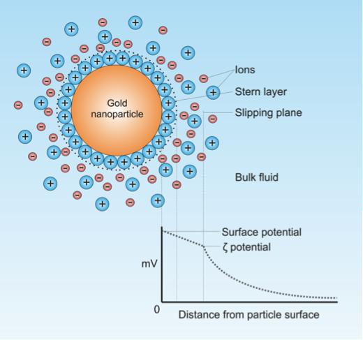 Gold nanoparticle in suspension